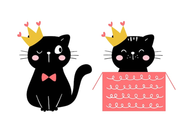 Disegna la principessa gatto nero per buon compleanno