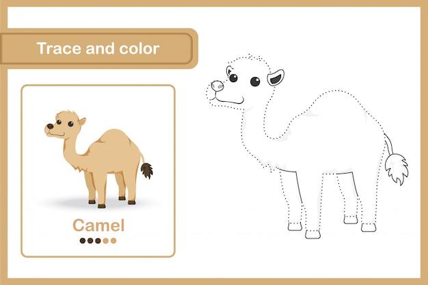 Disegno di un foglio di lavoro per bambini in età prescolare, traccia e colora: cammello