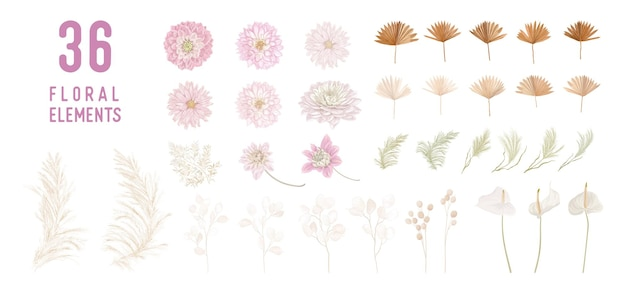 Fiori secchi di lunaria, dalia, erba di pampa, mazzi di vettore di foglie di palma tropicale. collezione isolata modello floreale acquerello pastello per ghirlande nuziali, cornici per bouquet, elementi di design decorativo