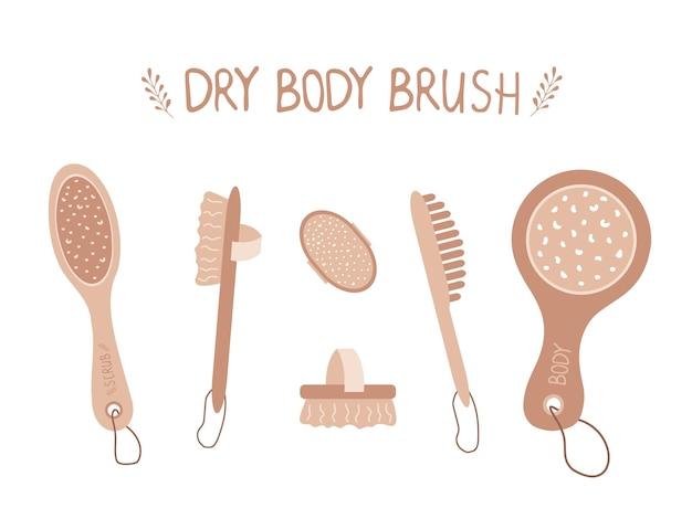 Collezione pennelli corpo secco. eco-cosmetico cellulite.