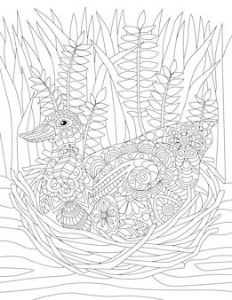 Anatra che si siede sul nido con il fondo incolore dell'erba alta che disegna l'oca selvatica che nidifica sul