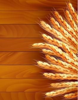Spighe di grano su legno