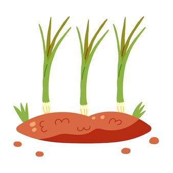 Letto di terra con cipolle verdi. disegnato a mano di verdure vettoriali