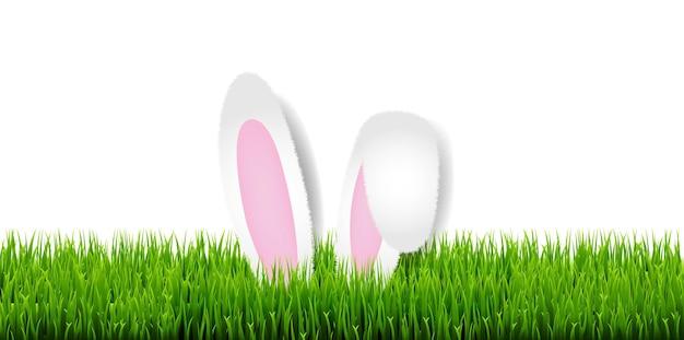 Carta di pasqua con erba di pasqua e orecchie da coniglio con maglia di gradiente