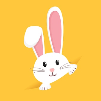 Coniglio di pasqua, coniglietto di pasqua.
