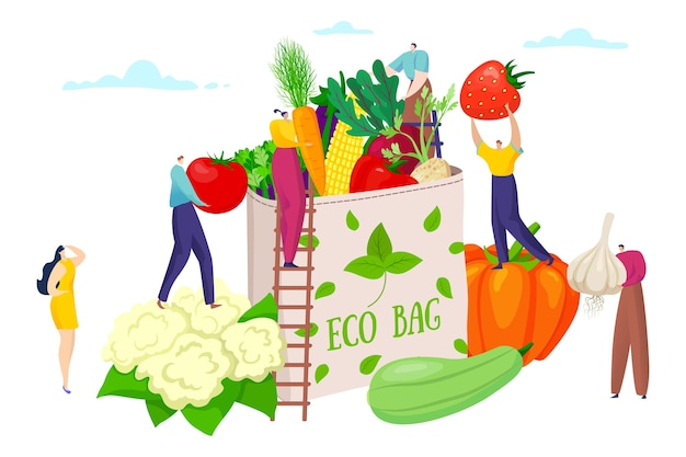 Borsa ecologica con cibo sano