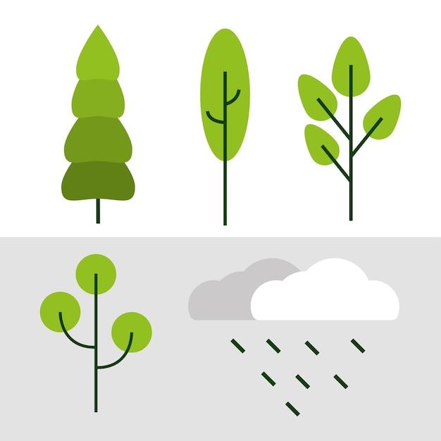 Ecologia albero e foglia