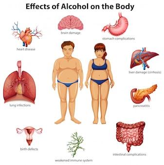 Effetti di alcol sul corpo