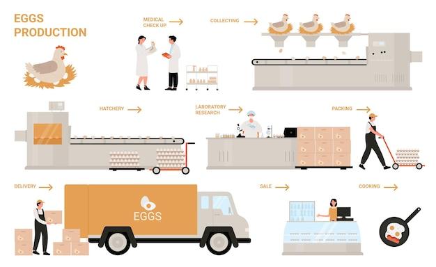 Produzione di processo dell'uovo nell'illustrazione infografica della fabbrica di pollame di pollo.