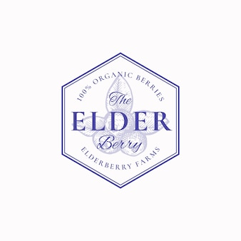 Distintivo dell'azienda agricola di bacche di sambuco o modello di logo. bacche disegnate a mano con foglie schizzo con retro tipografia e bordi.