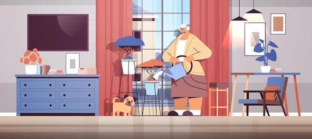 Donna anziana che innaffia i fiori dall'annaffiatoio casalinga anziana che si prende cura delle piante di casa soggiorno interno orizzontale a figura intera illustrazione vettoriale
