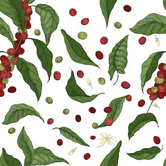 Modello senza cuciture botanico elegante con rami di alberi di caffè, foglie, fiori e frutti