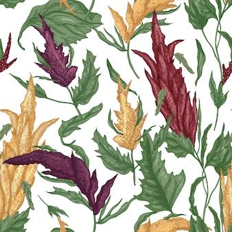 Elegante motivo botanico senza cuciture con piante di quinoa su bianco