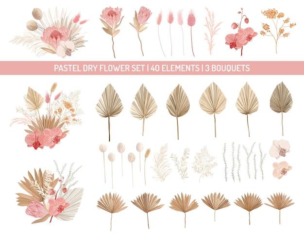 Eleganti fiori di protea secchi, foglie di palma, orchidea pallida, eucalipto, foglie tropicali secche, elementi floreali. inverno alla moda, bouquet da sposa autunnali, decorazioni vintage. set di illustrazioni vettoriali isolate