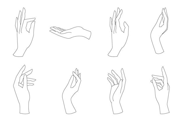 Eleganti mani femminili di diversi gesti in uno stile lineare minimal alla moda.