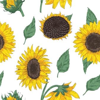 Elegante motivo floreale senza soluzione di continuità con parti di girasole. sfondo con bellissimi fiori e foglie