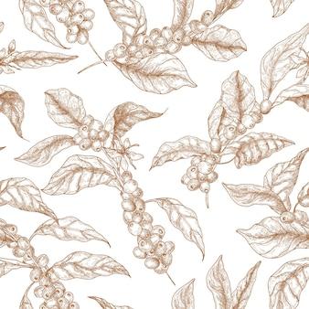 Modello senza cuciture elegante con rami di coffea o caffè, fiori, foglie e frutti o bacche disegnati con linee di contorno