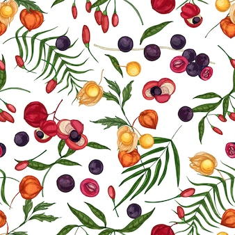 Modello senza cuciture elegante con goji fresco, acai, guaranà, frutti physalis e bacche su sfondo bianco