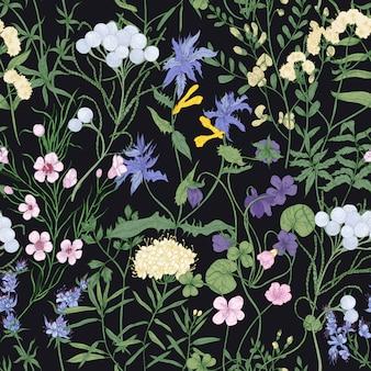 Modello senza cuciture elegante con splendidi fiori selvatici in fiore e bellissime erbe fiorite su sfondo nero