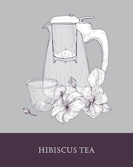 Elegante teiera o brocca di vetro con colino, tazza di tè e foglie di ibisco e fiori disegnati a mano con linee di contorno su grigio