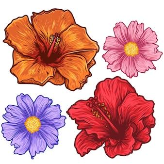 Fiori di rosa floreali disegnati a mano tropicali eleganti
