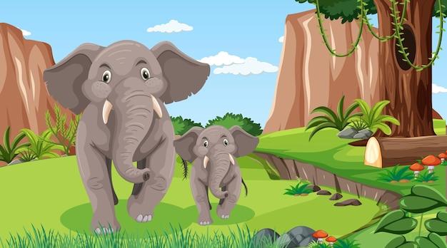 Mamma e bambino elefante nella scena della foresta o della foresta pluviale con molti alberi many