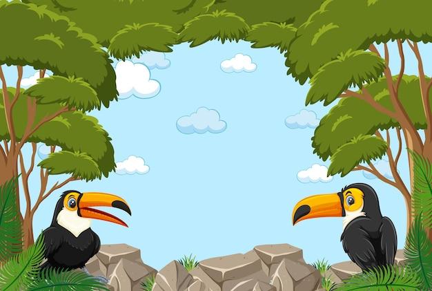 Banner vuoto con cornice di foglie e personaggio dei cartoni animati tucano
