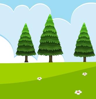 Scene della natura vuote con pini verdi con cielo vuoto