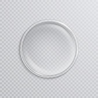 Capsula di petri realistica vuota isolata su trasparente.