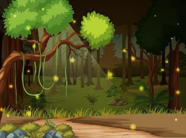 Sfondo paesaggio foresta incantata Vettore Premium
