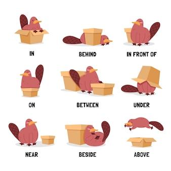 Preposizioni in inglese per foglio di lavoro per bambini