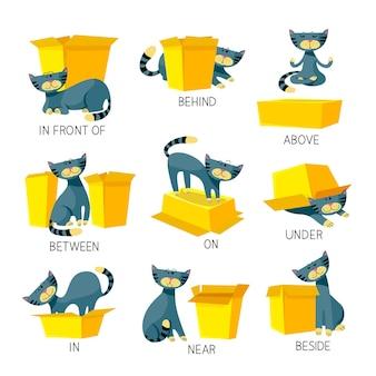 Preposizioni in inglese di place visual aid per bambini con simpatico personaggio di gatto in diverse pose che giocano con la scatola di cartone