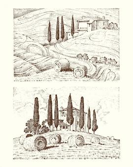 Disegnato a mano inciso nel vecchio schizzo e stile vintage per etichetta. campi di sfondo e cipressi. raccolta e covoni di fieno.