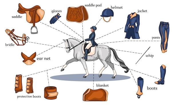 Infografica di sport equestri imbracatura per cavalli e attrezzatura da cavaliere al centro di un cavaliere su un cavallo in stile cartone animato. set di illustrazioni vettoriali per la formazione e la decorazione.