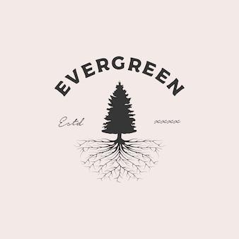 Illustrazione sempreverde di progettazione di logo del distintivo della radice