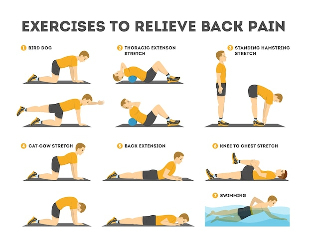 Set di esercizi per alleviare il mal di schiena. stretching e allenamento