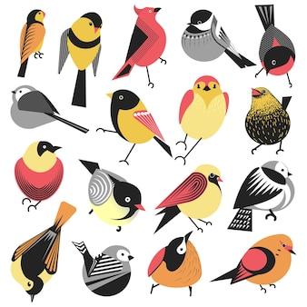 Uccelli esotici e locali hanno isolato animali con piume colorate, creature aviarie. specie con piume soffici, ciuffolotti o passeri. fauna e biodiversità del pianeta, vettore in stile piatto