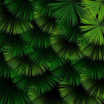 Reticolo esotico con foglie tropicali su sfondo nero