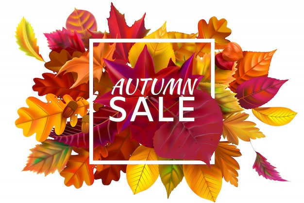 Saldi autunnali. le vendite di stagione di autunno, lo sconto autunnale e le foglie cadute incorniciano l'illustrazione