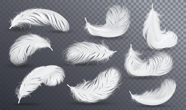 Set di piume roteate lanuginose bianche che cadono