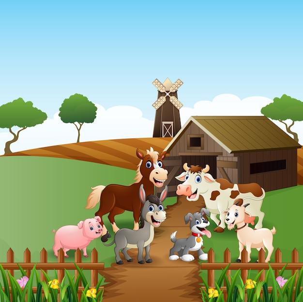 Animali da fattoria felici davanti alla gabbia