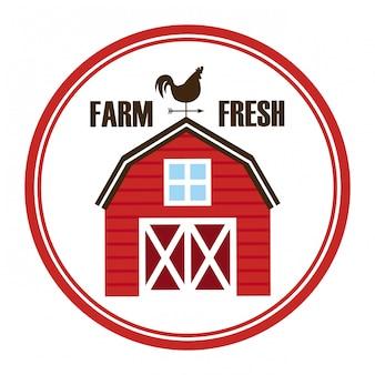 Design della fattoria