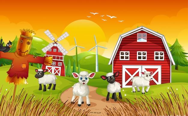 Scena di fattoria in natura con fienile e spaventapasseri e pecore