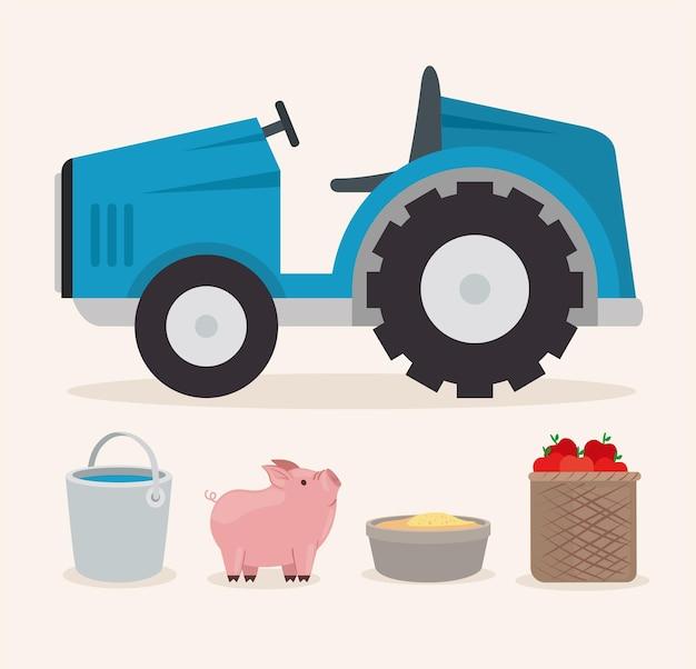 Trattore agricolo secchio d'acqua maiale e cibo