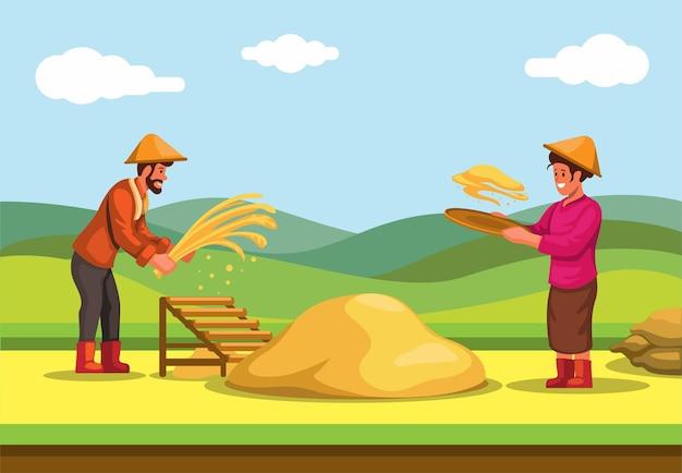Agricoltore che raccoglie il riso del grano nel vettore dell'industria agricola tradizionale dell'asia del campo di riso