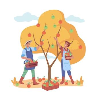 Contadino che raccoglie uomo e donna che raccolgono mele
