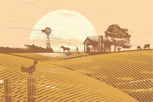 Agricoltore e cavallo che ara in campo all'alba