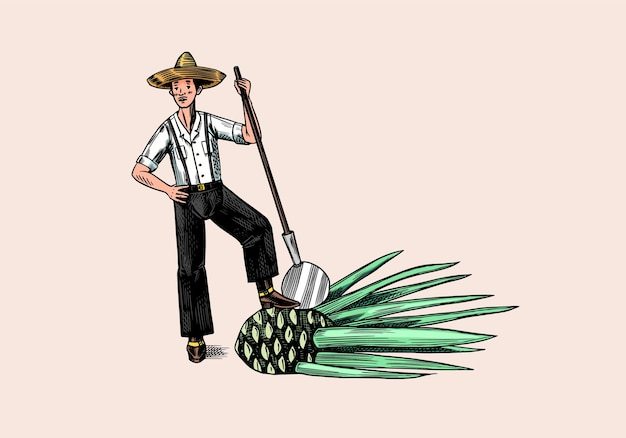 Contadino con cappello e cactus.