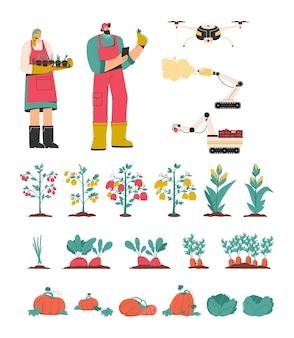 Set di agricoltori, attrezzature e verdure