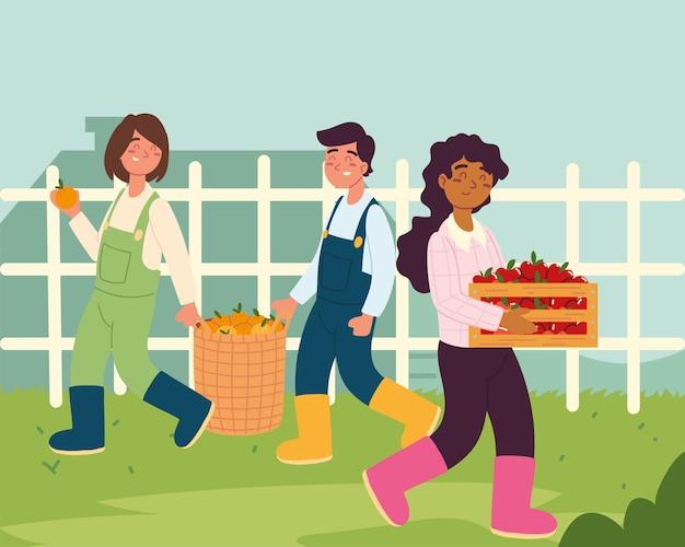 Agricoltori che raccolgono mele e arance